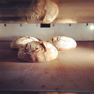 大垣クリエーターズパーク ドイツパン Backhaus Blau